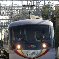 10103F Platinum Express