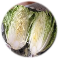 ♪ おいしい白菜・・・(*^^)v ♪ 。。