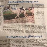 アカデミー賞とアラブ新聞