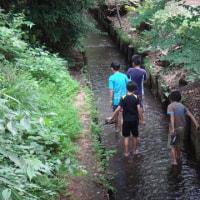 玉川上水の価値