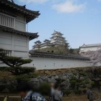 桜まみれ*姫路城