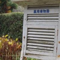 湧永満之記念庭園(3)・ランチ・広島三次ワイナリー