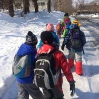 3月5日(日)の活動   歩いてみよう雪の上&北海道大学総合博物館