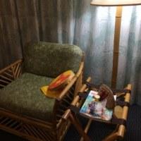 ホテルのお部屋でチクチクタイム