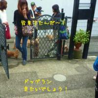 ボスと五郎丸達がRag's Cafeにご来店!