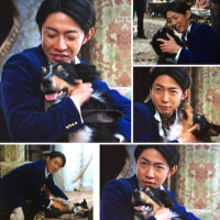 相葉くんは最後まで相変わらず、それでもそこそこ面白かった「貴族探偵」