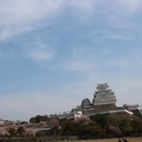 白くなって初めての姫路城と書写山