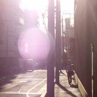 ひさびさの太陽お目見えでした