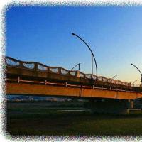 色々な橋の風景が一望出来ちゃう
