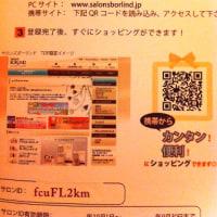 feel専用のBorlindショッピングサイト