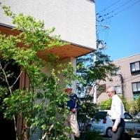 モデルハウス 初夏の庭