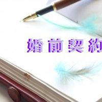 プレナップ指南書(婚前契約書・婚姻契約書・結婚契約書)リニューアル