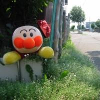 旭川 ・ 各地にアンパンマン 出没!