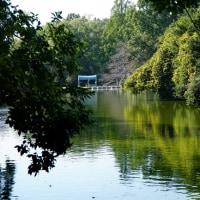 周囲を丘に囲まれた武蔵関公園ですが遅めの初秋の訪れです。その1