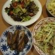 島らっきょうの炒め物とサラダ2品:休日ディナー【4/24】