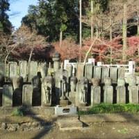 純粋な仏教を感じる禅宗の平林寺