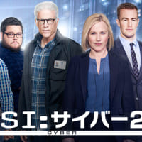 CSI : サイバー2 #10 「レイヴンの涙」