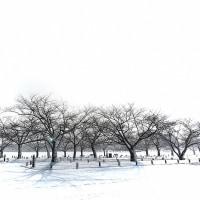 雪の公園にて…