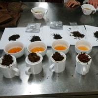 398煎 和紅茶拝見会の講師を務めさせて頂きました