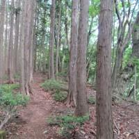 天狗岩を登り武川岳(1052m)へ