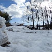 雪のヘそ公園