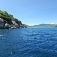 インドネシア・コモド島 ご報告(2017)