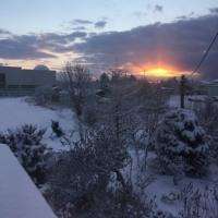帰国翌日の朝は雪に