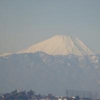 真白い富士