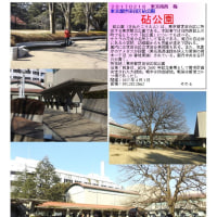 花巡り 「梅-194] 砧公園