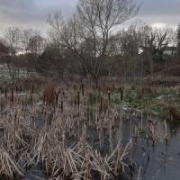 天気のいい寒い午後、河沿いの雪解けでどろどろの散歩道を歩く