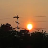真っ赤に燃えた太陽だから