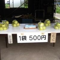 リンゴの無人販売所
