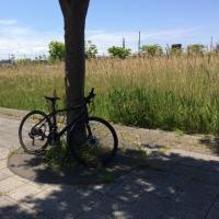 久し振りサイクリング