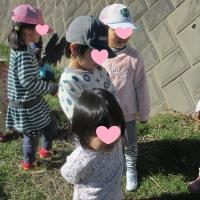 2017年1月24日(火)の【写真館】