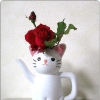 ジョロと薔薇
