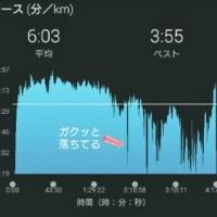 琉小走り部5月の陣②(フルマラソン結果)