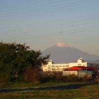 2014/11/15 富士山 朝