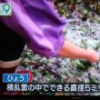 震度3にしては、かなり揺れた。東京では雹が降ったり本当に異常気象ですね。