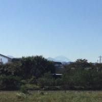 富士山を眺めに、浅川土堤へ