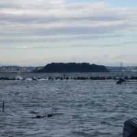 千葉県の海苔師