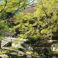大原 宝泉院と勝林院