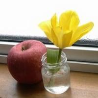 外は雪、部屋は一足先に春。