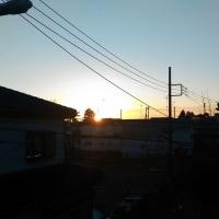 初ガッキー(^_-)-☆