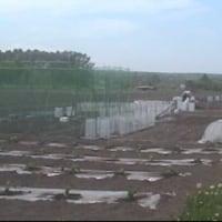 雨には敵いません 貸し農園も開店休業中です