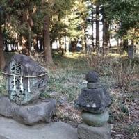 二宮赤城神社(7)