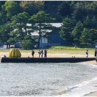 直島徘徊記 黄色いかぼちゃ界隈
