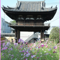 般若寺(奈良)
