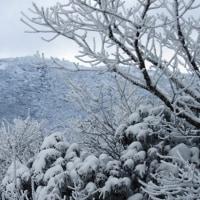 雪景色(撮影旅行⑬)
