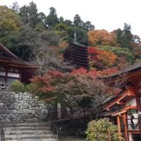 紅葉 奈良 談山神社