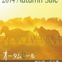�ڥ������ॻ����2014(Autumn Sale��1����)�ۤΡ־��ͽ���ϼ̿��פ���!
